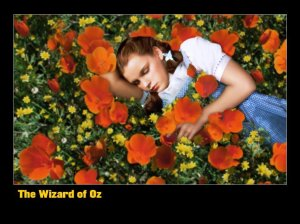 Dorothy-In-the-Poppy-Field-the-wizard-of-oz-4640408-1024-768